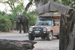 AllradCampingsafari_Botswana_PhotoCredit_FelixFaigle_Karawane.jpg