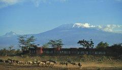 Kenia_AmboseliNP.jpg