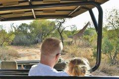 Sdafrika_Familienhotel_SafariPlains.jpg