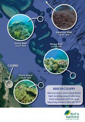 GreatBarrierReef_Grafik_Recovery.jpg
