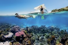 GreatBarrierReef_Unterwasser.jpg