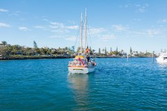 SprayOfTheCoralCoast_SaltwaterEcoTours_SunshineCoast.jpg